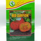 "Kabocha Orange – Pertiwi ""RED LAMPION"""