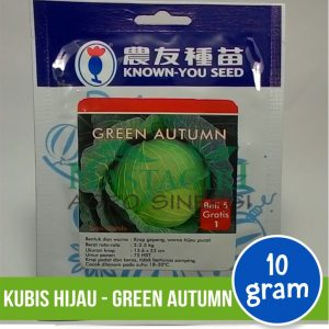 "Kubis Hijau – Known You Seed ""GREEN AUTUMN"""