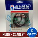 "Kubis Merah – Known You Seed ""SCARLET"""