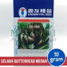 "Selada Butterhead Merah ""L95-185"" – Known You Seed"