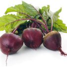 Red Beetroot
