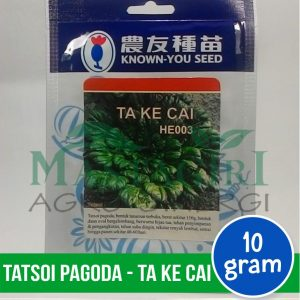 "Tatsoi Pagoda – Known You Seed ""TA KE CAI"""