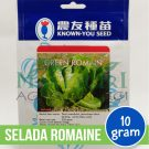 "Selada Romaine – Known You Seed ""GREEN ROMAIN"""