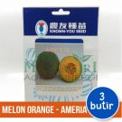 "Melon Orange – Known You Seed ""AMERIA"""