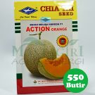 Melon Jala Orange ACTION ORANGE Cap Kapal Terbang