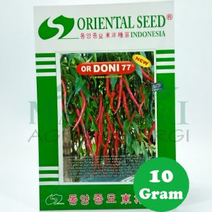 Cabe Keriting Hibrida OR DONI 77 Oriental Seed