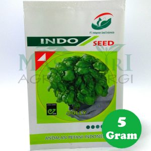 "Basil ""DOLLY"" Indogreen Seed"