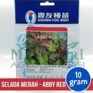 """Selada Merah – Known You Seed """"ABBY RED"""""""
