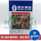 """Selada Merah – Known You Seed """"AVA RED"""""""