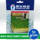 Wheat Grass – Known You Seed