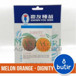 """Melon Orange – Known You Seed """"DIGNITY"""""""